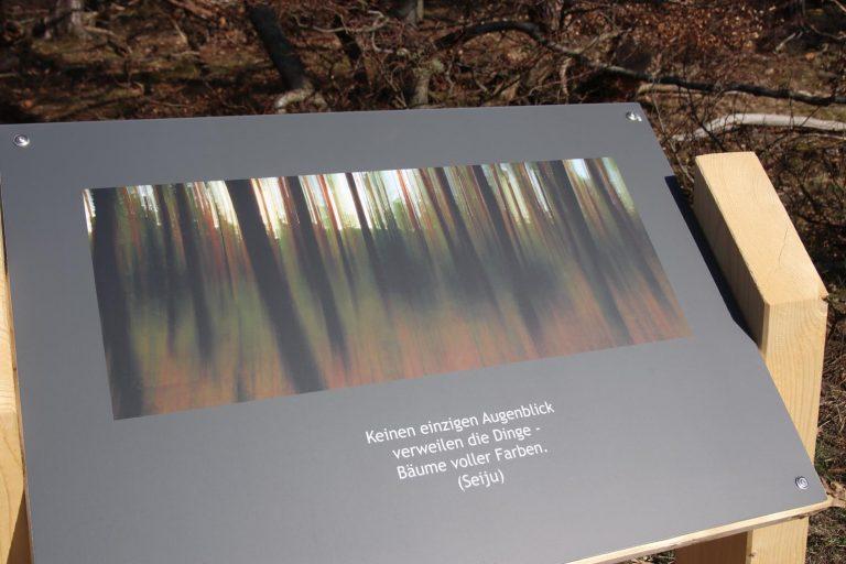 Dieses Bild entstand im Herbstwald und der Aquarell-Charakter entstand durch Kamerabewegung während der Belichtung.