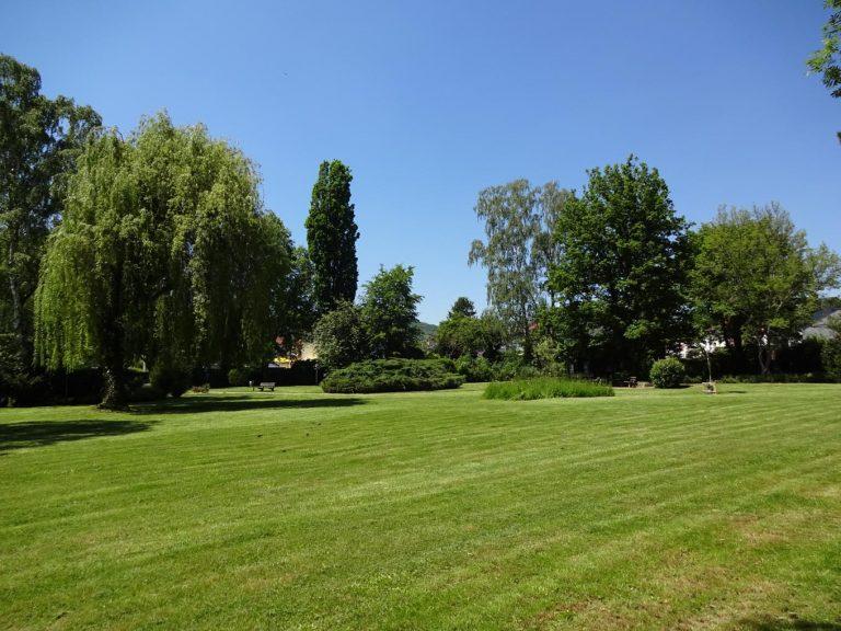 Freiflächenwiese