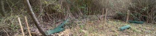 20210409_Vandalismus_Arboretum_Main_Taunus - schmaler
